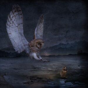 """""""Nocny łowca"""""""